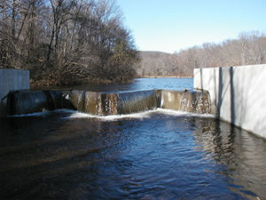 Mercer's Dam Repair/Restoration